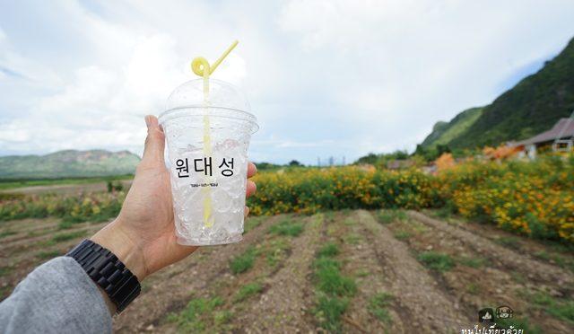 วอน-แด-ซอง 원 대 성